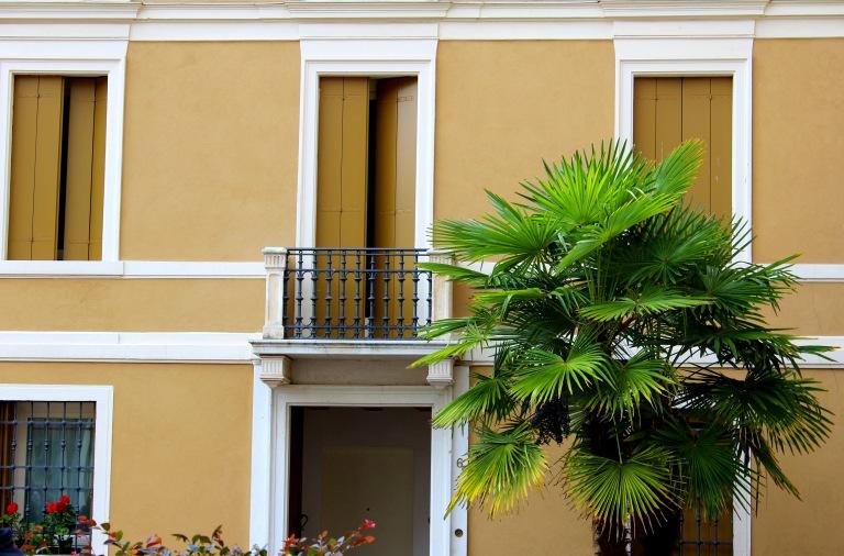 Palma in città